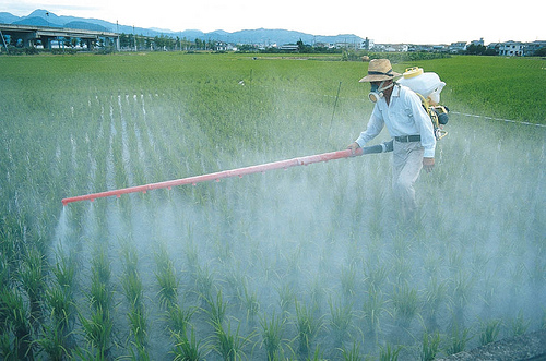 photo-pesticide-CC-global-water-partnership